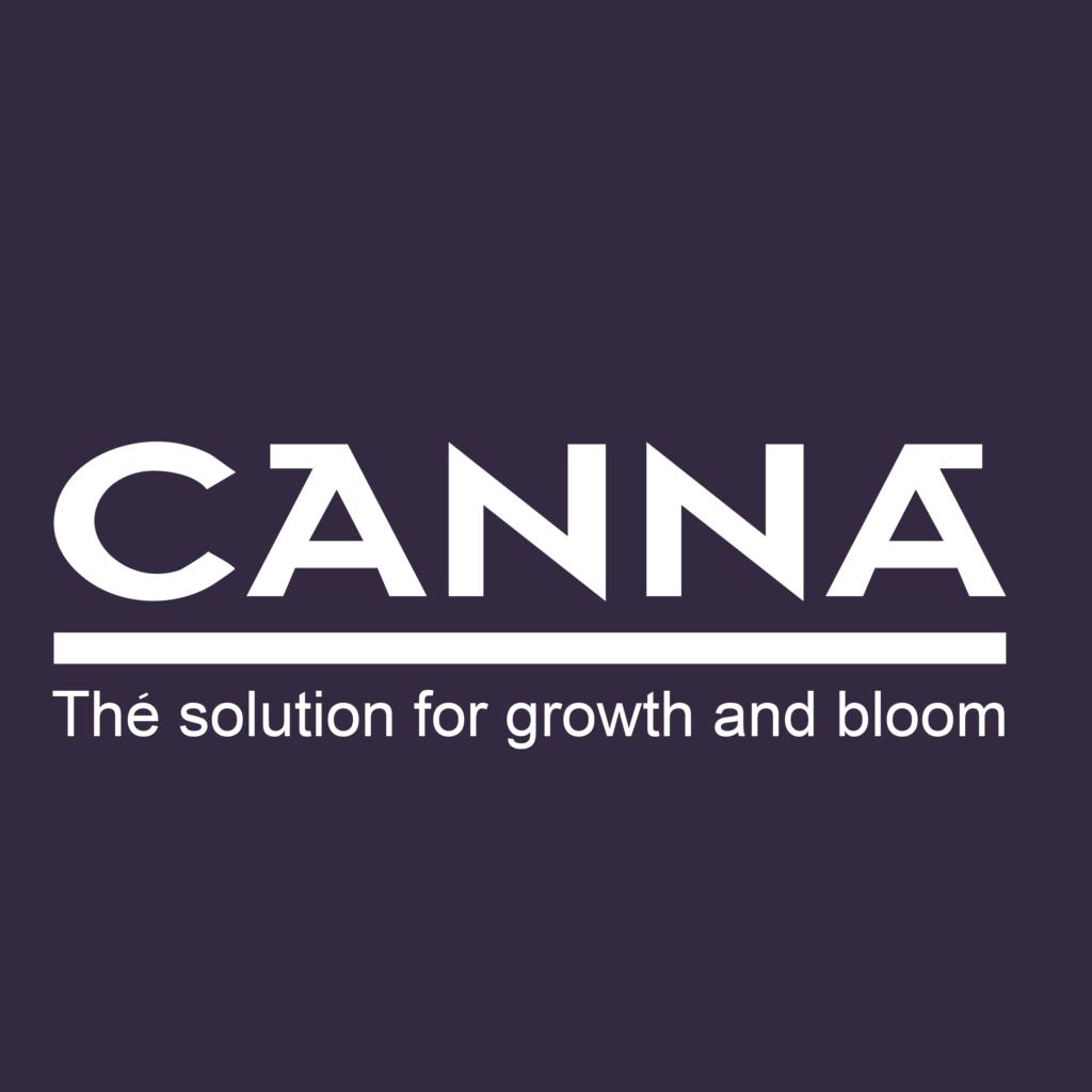CANNA - Violet Background
