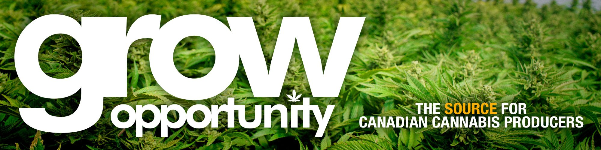Grow Opportunity - Banner