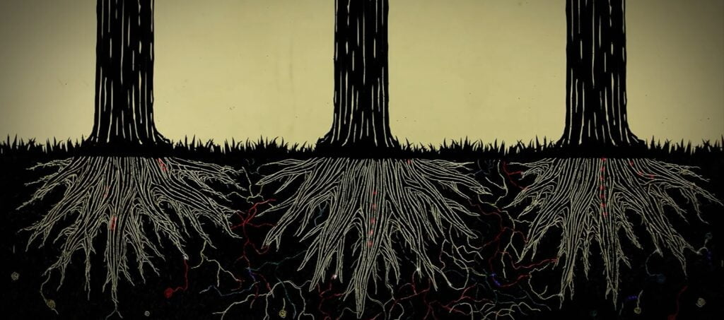 BIllion year old relationship of plant's root system and mycorrhizal fungi
