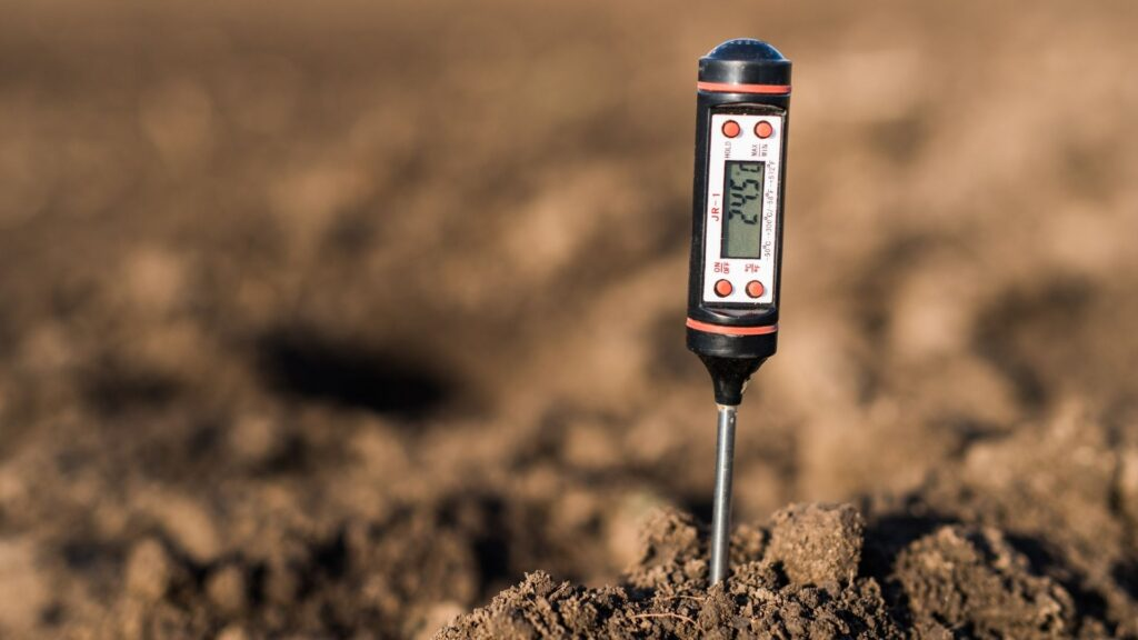 Good plant growers should know that keeping plants in a stable temperature rootzone plays a critical role, and one of the major factors  that affect root health and plant growth.