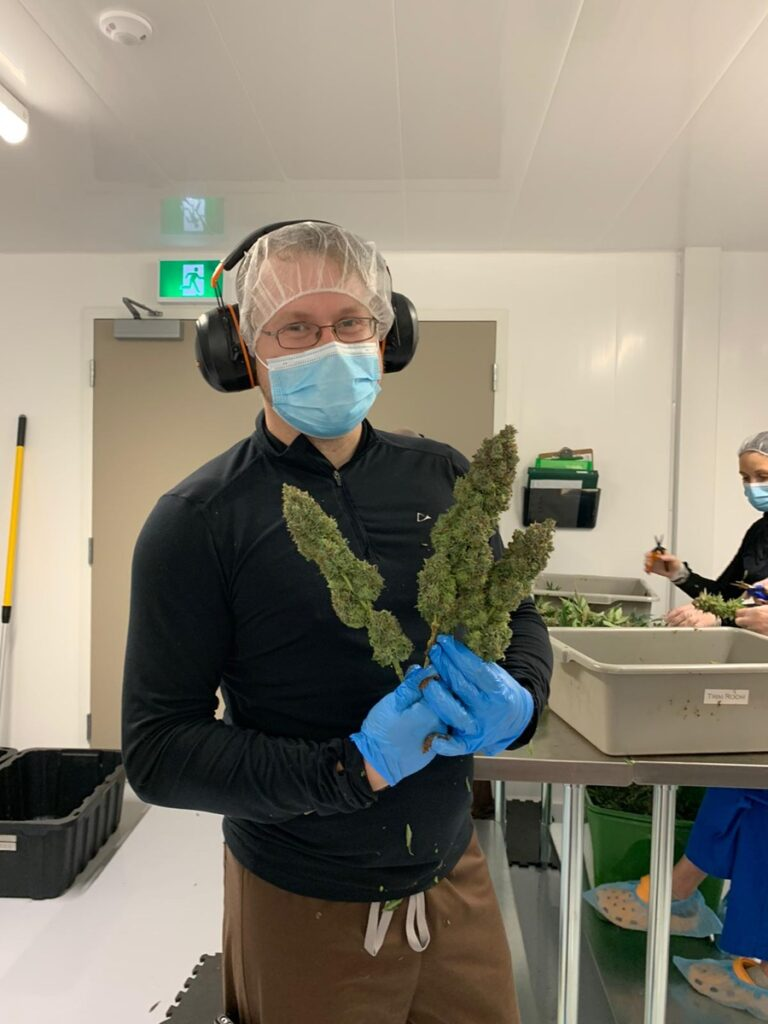 Meurig that he provided where he hold cannabis in his hands within his facility 768x1024 1