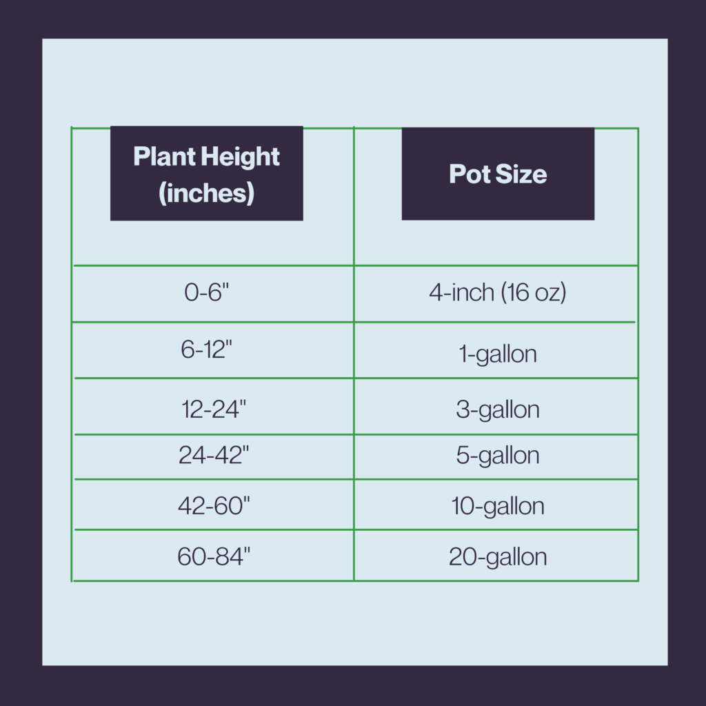 Plant-Height-Chart